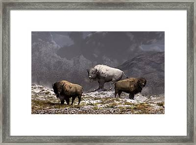 Bison King Framed Print by Daniel Eskridge