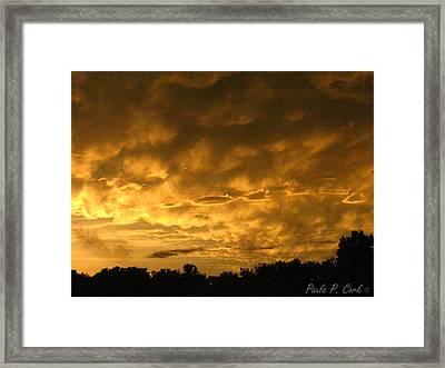Bittersweet Sky Framed Print by Paula Cork