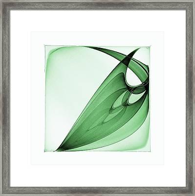 Bizarre Leaf Framed Print by Klara Acel