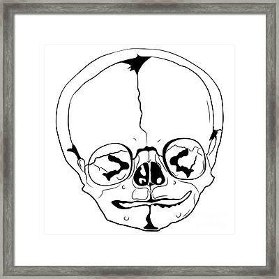 Bizarre Skull Framed Print by Michal Boubin