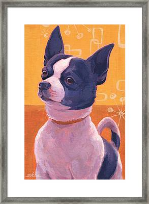 Black And White Chihuahu-attitude Framed Print by Shawn Shea