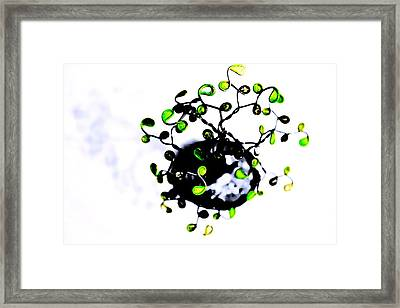 Black And White Color Life Framed Print by Sandra Pena de Ortiz