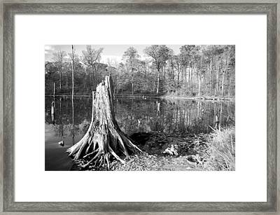 Black And White Fall Alum Creek Framed Print by Monica Lewis