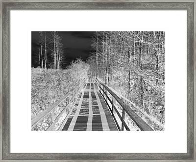 Black Sky White Shadows Framed Print by Bill Lucas