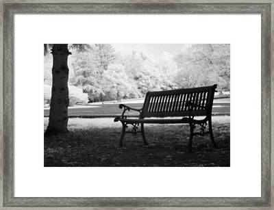 Charleston Black And White Infrared Charleston Battery Park Bench Framed Print by Kathy Fornal
