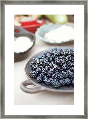 Blackberries Framed Print by AE Pictures Inc.