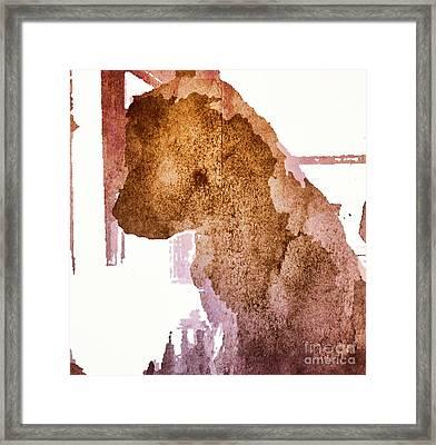 Blind Dog Winston Framed Print by Christine Segalas