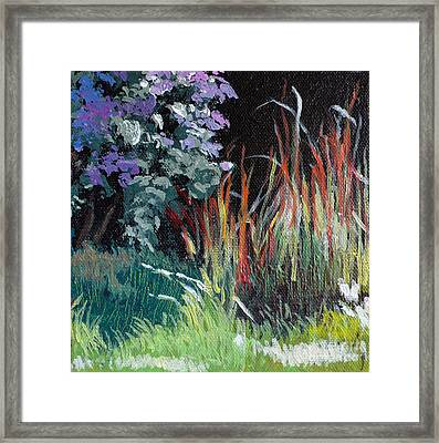 Bloodgrass And Asters Framed Print by Melody Cleary