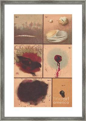 Bloodstain, Blisters, Bullet Holes, 1864 Framed Print by Science Source