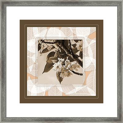 Blooming Branch Framed Print by Bonnie Bruno