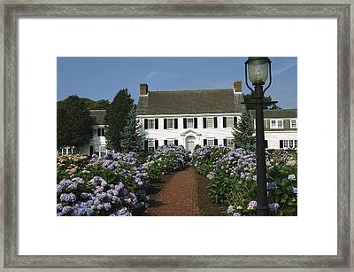 Blooming Hydrangeas Line A Homes Front Framed Print by Darlyne A. Murawski