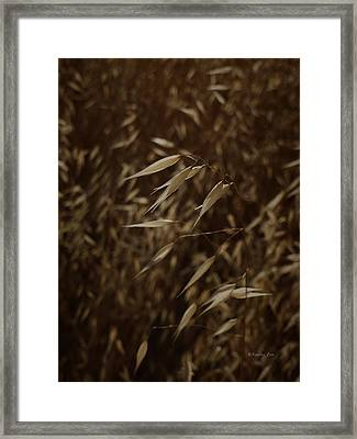 Blowin' In The Wind Framed Print by Xueling Zou