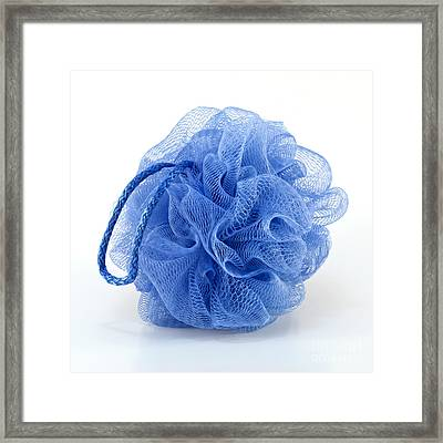Blue Bath Puff Framed Print by Blink Images