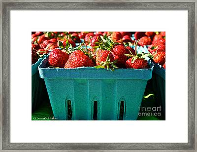 Blue Box Framed Print by Susan Herber