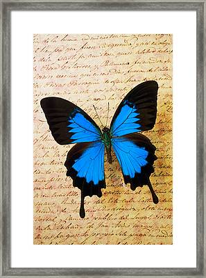 Blue Butterfly On Old Letter Framed Print by Garry Gay