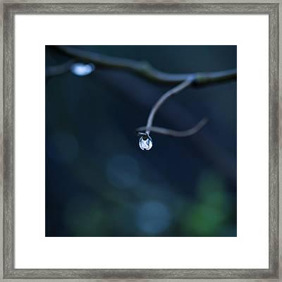 Blue Drop Framed Print by Photography by Gordana Adamovic Mladenovic