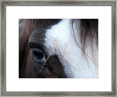 Blue Eyed Girl Framed Print by Kim Yarbrough