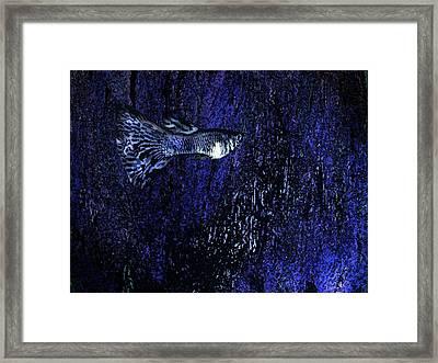 Blue Fish Art Framed Print by Mario  Perez