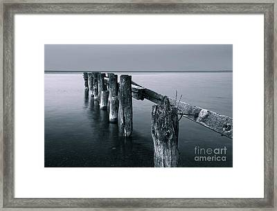 Blue Hour Framed Print by Charline Xia