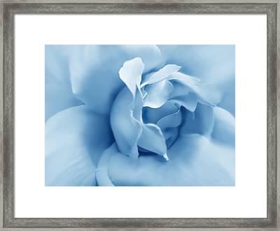 Blue Pastel Rose Flower Framed Print by Jennie Marie Schell