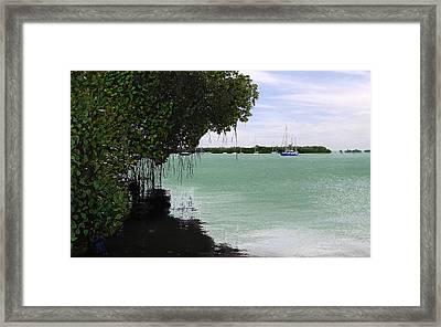 Blue Sailboat Framed Print by Tony Rodriguez