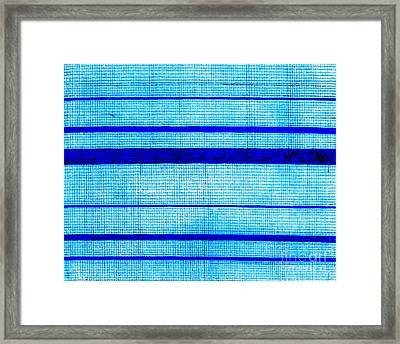 Blue Sha Gauze Weave With Stripes Print 1825 Framed Print by Padre Art
