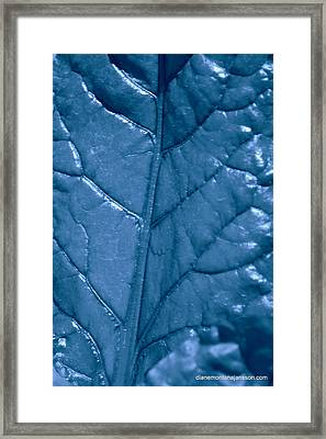 Blue Songs Framed Print by Diane montana Jansson