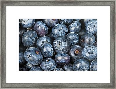 Blueberries Framed Print by Bill Brennan