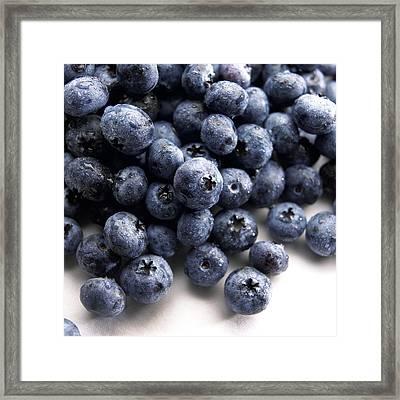 Blueberries Framed Print by Slivinski Photo