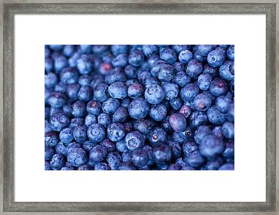 Blueberries Framed Print by Tanya Harrison