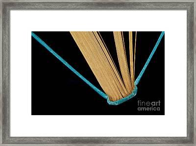Bluebook Framed Print by Dan Holm