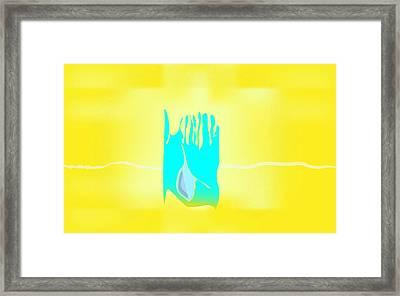 Bluegrass Framed Print by Kevin McLaughlin