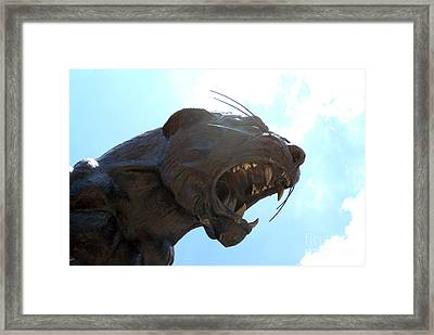 Boa Stadium Panther Framed Print by Clear Sky Images