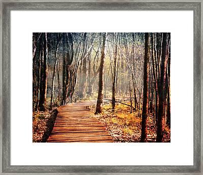 Boardwalk Framed Print by Jai Johnson