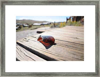 Bodie 007 Framed Print by Earl Bowser