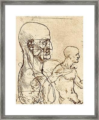 Body Anatomy Framed Print by Sheila Terry