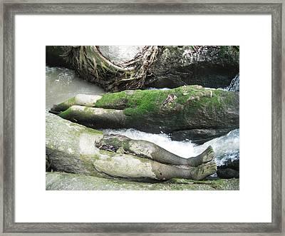 Body Rocks Framed Print by Manik Designs