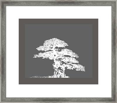 Bonsai I Framed Print by Ann Powell
