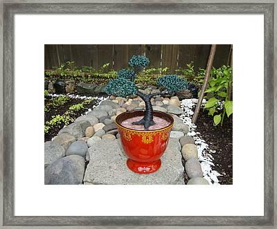 Bonsai Tree Medium Red Glass Vase Planter Framed Print by Scott Faucett