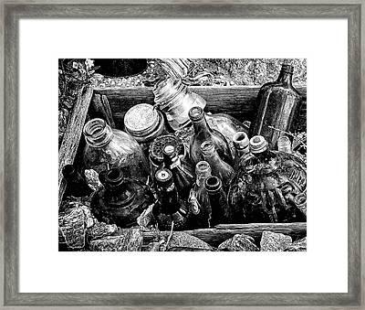 Bottle Garden Framed Print by Ron Regalado