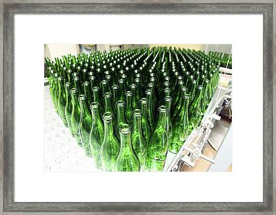 Bottles At A Wine Bottling Factory Framed Print by Ria Novosti