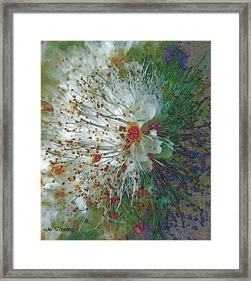 Bouquet Of Snowflakes Framed Print by Joanne Smoley