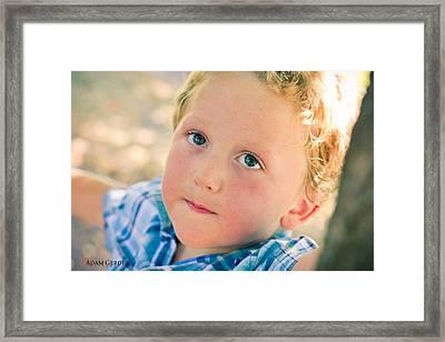 Boy In Tree Framed Print by Adam Gerdes