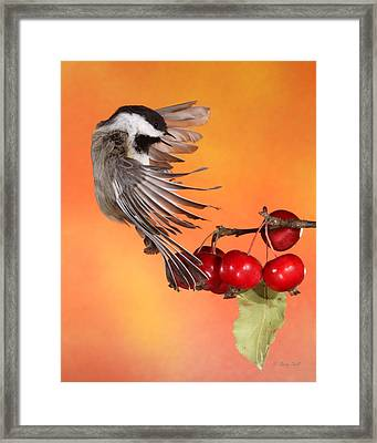 Bracing To Back Up Framed Print by Gerry Sibell