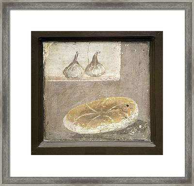 Bread And Figs, Roman Fresco Framed Print by Sheila Terry