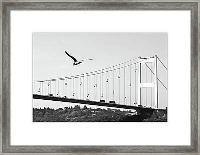 Bridge And Seagull, Bosphorus, Istanbul, Turkey Framed Print by Gulale