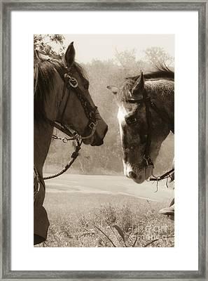 Brief Encounter Framed Print by Kim Henderson
