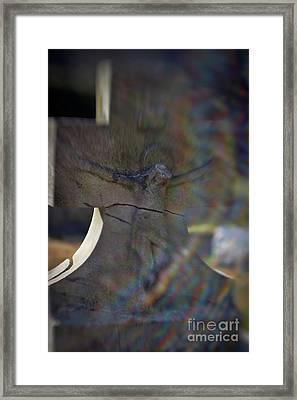 Broken Head Cross Framed Print by Susan Isakson