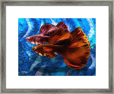 Brown Fish In Abstract Art Framed Print by Mario Perez