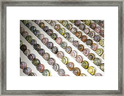 Brown-lipped Snail Colour Variants Framed Print by Dr Keith Wheeler
